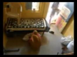 رجل عجوز يقصف العسل الآسيوي السميك للغاية بعد توقف الكاميرا 2