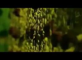 فيديو سكس عزراء هندي
