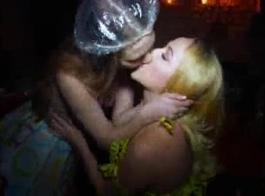 مثليات البرية لعق الهرات بألسنتهم