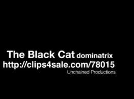 القط واحد أسود استقلاب ل جوارب أنثى جيئة وذهابا الكعب العالي.