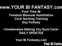 مجموعة ثنائية الجنس مثلي الجنس