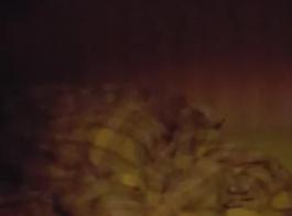 النوم الهواة كوغار بوف اللعنة في كرسي بعد الجنس عن طريق الفم